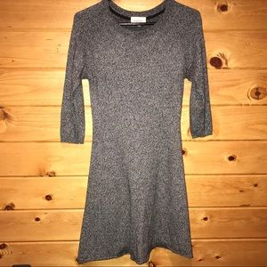 Aritzia Sunday Best Skater Dress